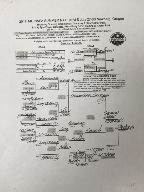 2017 14c national picture of bracket and pool play.jpg
